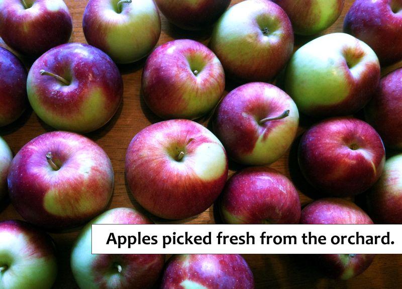 Apples (blog)